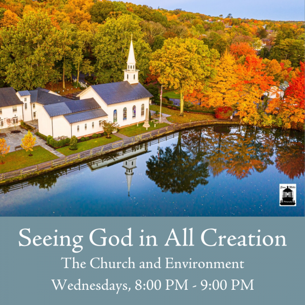 Seeing God in all Creation: The Church and the Environment